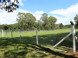 Reabertura do campo da Barragem acontece no domingo 10 de fevereiro