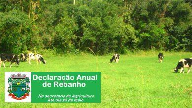 Declaração Anual de Rebanho deverá ser elaborada até o dia 29 de maio