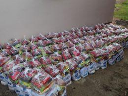 Famílias em situação de vulnerabilidade recebem cestas básicas