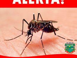 Casos suspeitos e confirmados na região ligam o sinal de alerta para a proliferação da dengue
